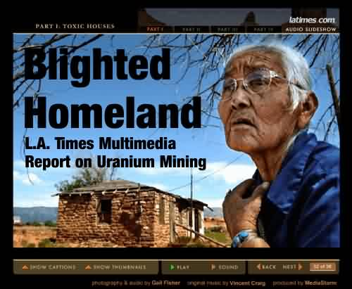 Blighted Homeland